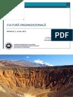1. Cultură Organizațională