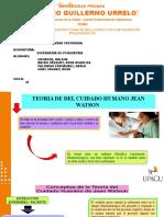 3.2 TEORIA DE JEAN WATSON
