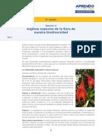 9)s13 Prim 6 Recurso Anexo Algunas Especies de La Flora Biodiversidad Dia 5