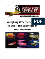 Arowana Care - Weighing Whether or Not to Use Tank Substrate in Your Arowana