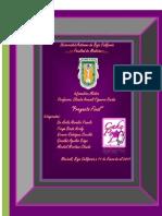 Proyecto Final Word Info
