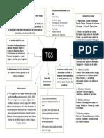 TGS mapa conceptual