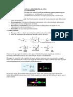 SUSTITUCION NUCLEOFILICA BIMOLECULAR (SN2) Y ELIMINACION BIMOLECULAR (E2).pdf