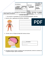 Guia Nº 8 CIENCIAS NATURALES  sistema nervioso sara nikolle herrera