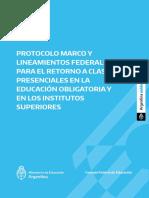 Protocolo Marco y Lineamientos Federales
