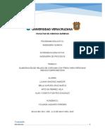 ELABORACIÓN DE HELADO DE CÚRCUMA CON FRESA PLUS.docx