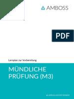 lernplan-muendliche-pruefung-m3