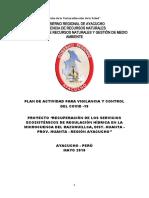 Plan VPC Covid 19-Proy Razuillca.doc