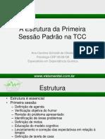 primeirasessonatcc-170417201400