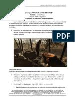 La-technique-PAVES-PLASTIQUES-SABLE-est-à-condamner.pdf