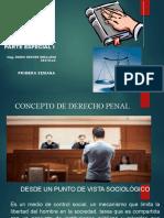 DERECHO PENAL PARTE ESPECIAL I - SEGUNDA SEMANA (2)