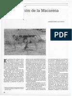 LA DESTRUCCIÓN DE LA MACARENA.pdf