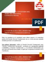 PROCESAL CONSTITUC.ZEGARRA.pptx