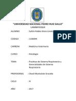 UNIVERSIDAD NACIONAL PEDRO RUIZ GALLO9