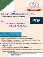 3rd stage Liver diseases (2)-HMU