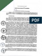 DA N° 002-2020-Convocar al proceso de elección de los representantes de la Sociedad Civil ante el CCLD San Borja - periodo 2020-2022