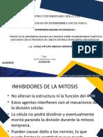 inhibidores de la mitosis expo (1)