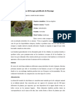 Fauna del bosque petrificado de Puyango