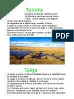 Taiga, Tundra e Steppa A. Benetti