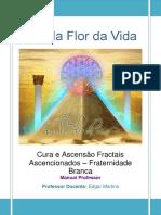 Cura-e-Ascensão-Fractais-Ascencionados-Fraternidade-branca.pdf