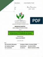MEMOIRE_636934203571293164.pdf