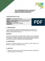 GUIA-DE-TRABAJO-INDEPENDIENTE-PARED-ABDOMINAL