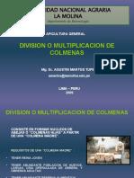 12 División de colmenas 2009