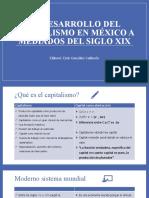 El desarrollo del capitalismo en México Siglo XIX