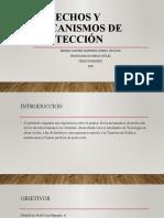 actividad 3-2 derechos y mecanismos de proteccion