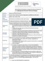 Resumen Personal Tecnico de Apoyo 2011