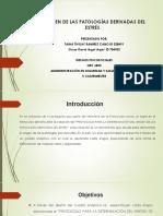 Protocolo Cuadro Sinóptico