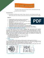 270073101-Modul-Sistem-Ekskresi.doc