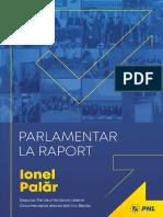 Deputatul Ionel Palăr - Raport 2020
