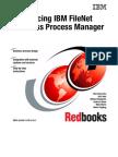 IBM FileNet Business Process Manager