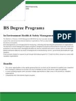 BS (EHS)