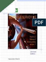 EGS-MIS2010(Borehole surveys).pdf