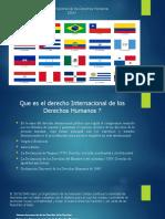Derecho Internacional de los Derechos Humanos.pptx
