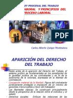 PROCESO LABORAL Y PRINCIPIOS PROCESALES - Carlos Quispe Montesinos.pps
