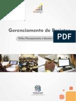 Apostila Competa - G. Projetos