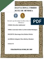 CONVENIO SOBRE LA DIVERSIDAD BIOLÓGICA.docx