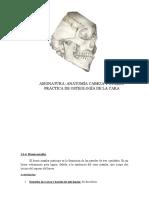 PRACTICA OSTEOLOGIA.docx