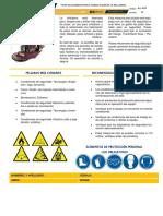 A1-I47  FICHA DE SEGURIDAD DE LA BRILLADORA v.0