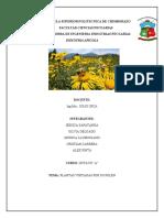 PLANTAS-VISITADAS-POR-EL-POLEN.docx