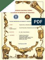 ORGANIZACIÓN Y ADMINISTRACION DE PYMES.docx