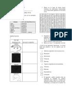 375232918-Taller-de-Biologia-y-Quimica-Aris.docx