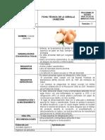 Ficha técnica_CEBOLLA CABEZONA