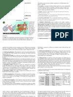 sexto guia tejido animal y vejetal final - copia (1).pdf