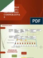 estruturas estaduais e cooperativas completa
