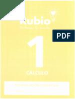 Rubio Cálculo 1