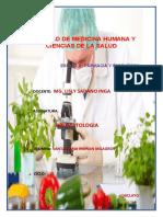 enzima 1.docx
